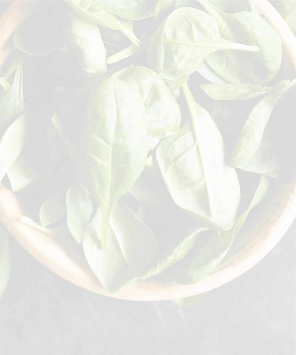 Basilicum - Food Drink Experience